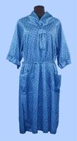 blue-gown-11-23-6-sm.jpg
